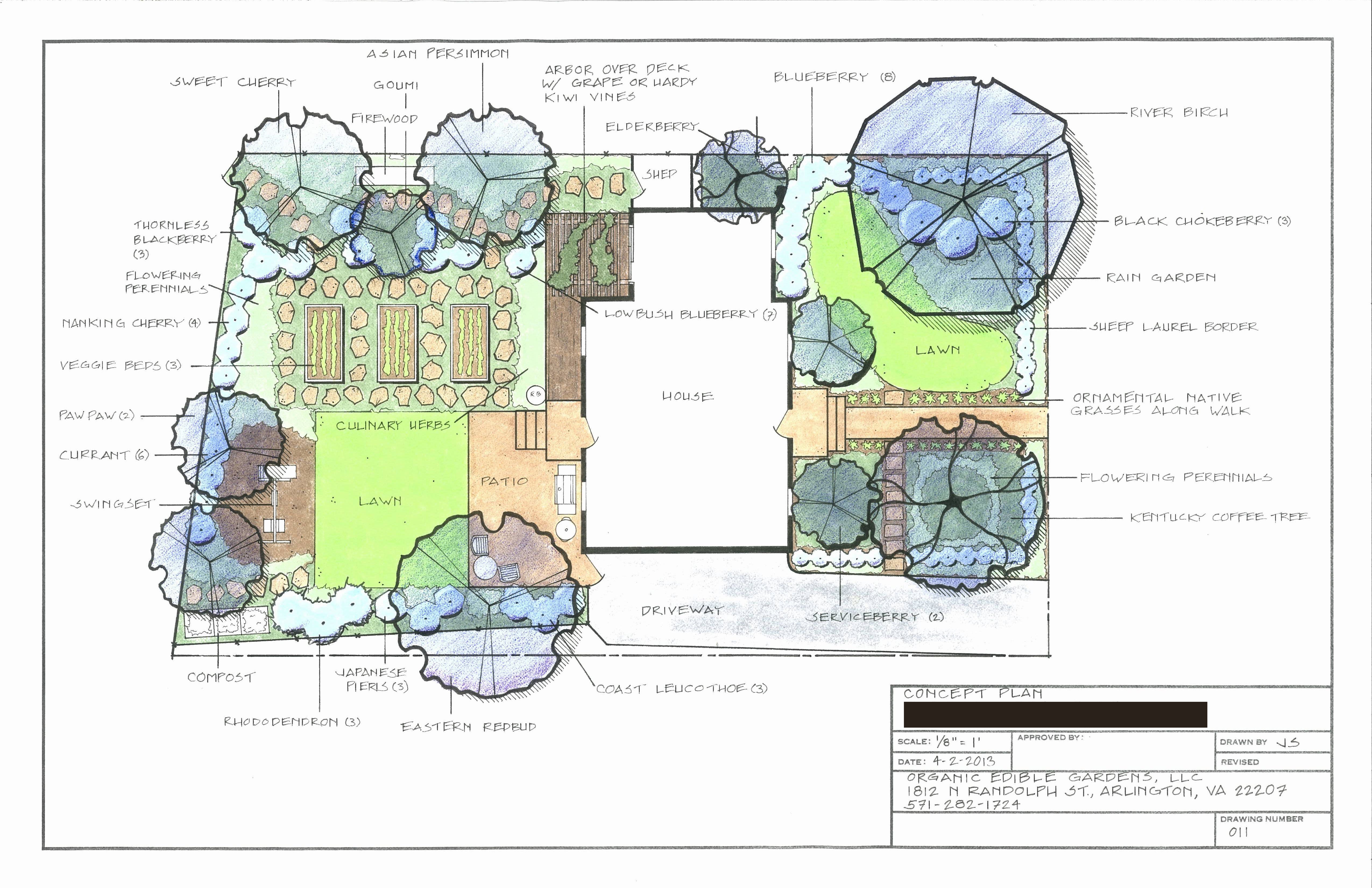 Urban permaculture design for a young family