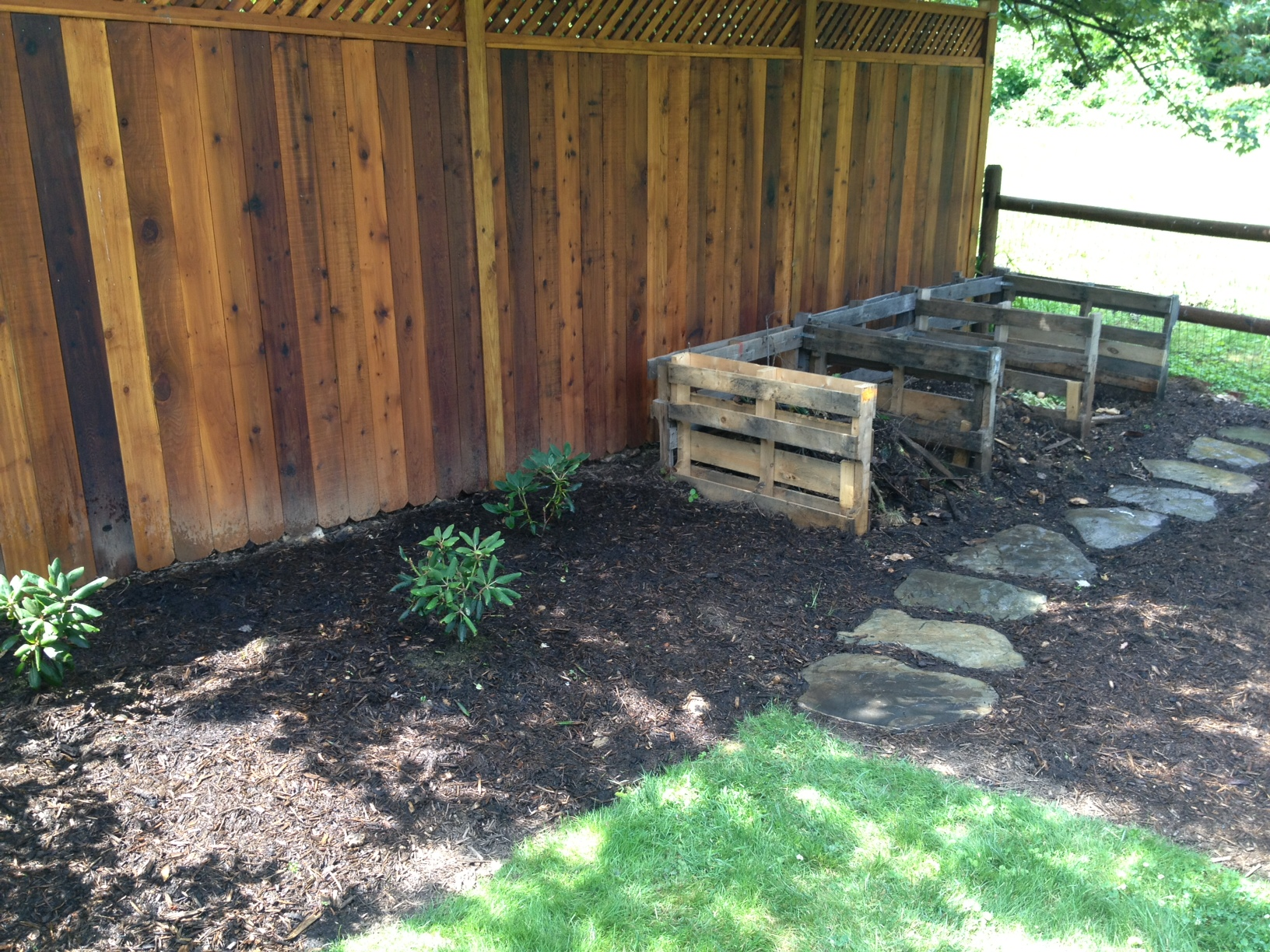 3-bin compost area and newly planted native rhododendrons