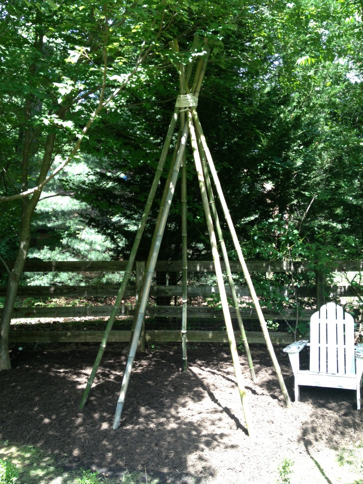 Vine teepee - a fun hiding place for the kids!