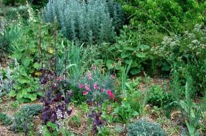 Gardening in Polycultures